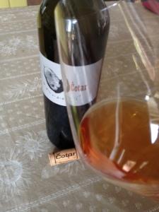 Orange Wine di Čotar