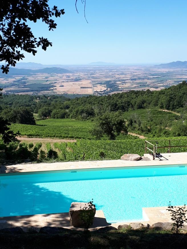 Vista sulle vigne, la Maremma, l'Isola del Giglio Valdonica
