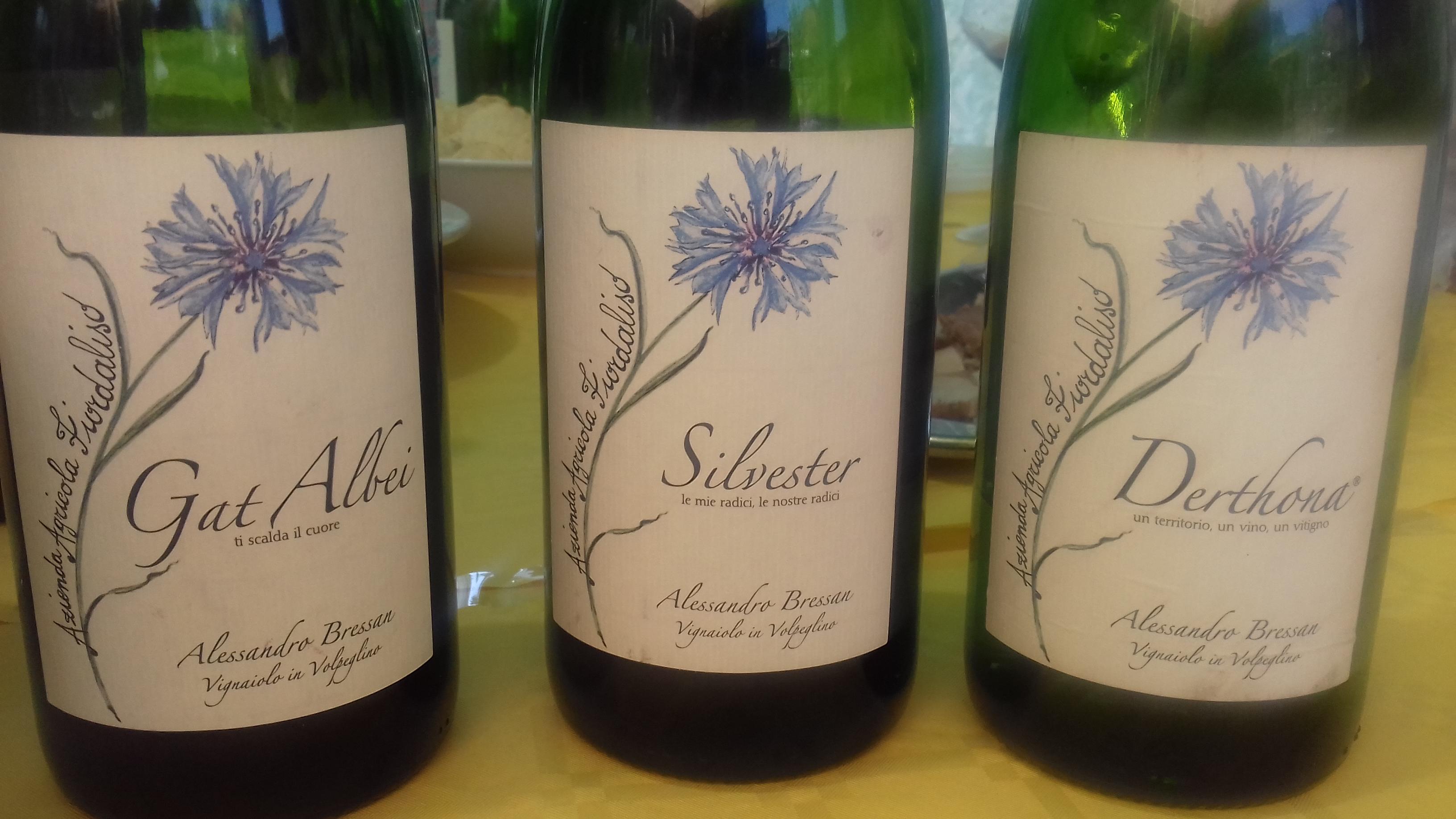 i vini dell'azienda Agricola Fiordaliso di Alessandro Bressan
