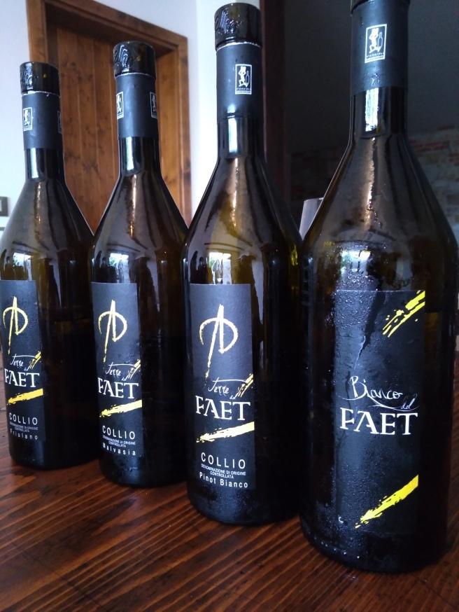 Terre del Faet: i vini in degustazione