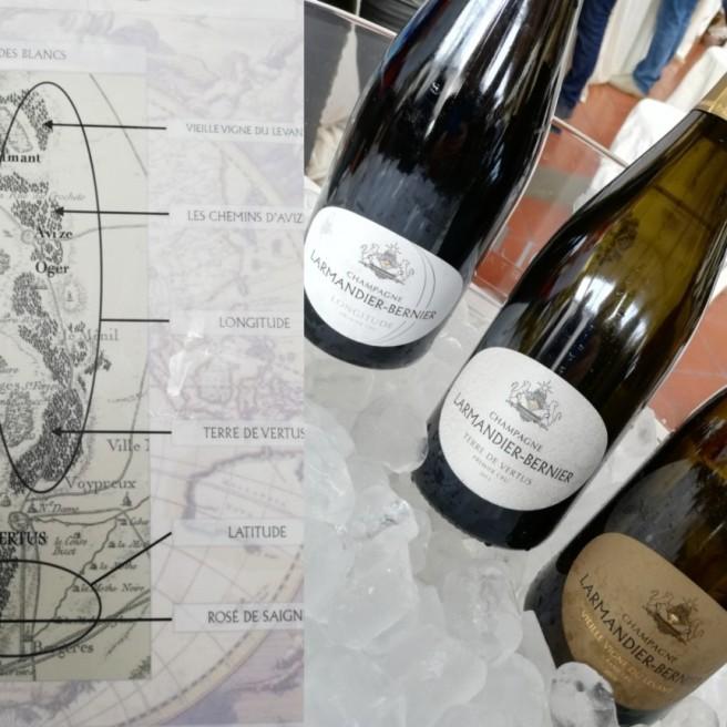 Gli Champagne Larmandier-Bernier