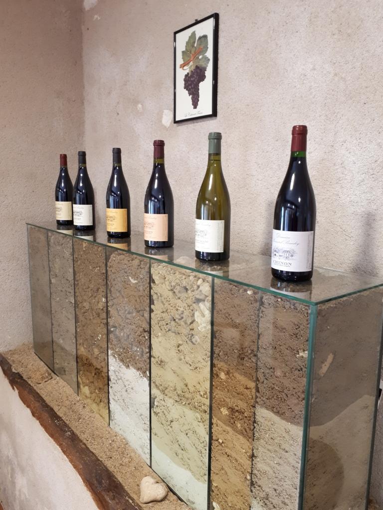 Bernard Baudry: vinificazione per parcelle